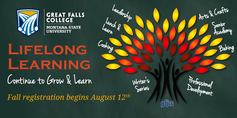 Lifelong Learning Fall 2016