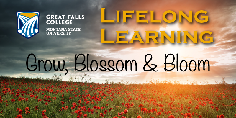 Lifelong Learning Spring 2017